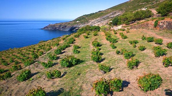 Turismo: a Pantelleria +10% nel 2016