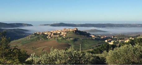 Agricoltura: Agronomi a congresso su Eccellenze Sicilia