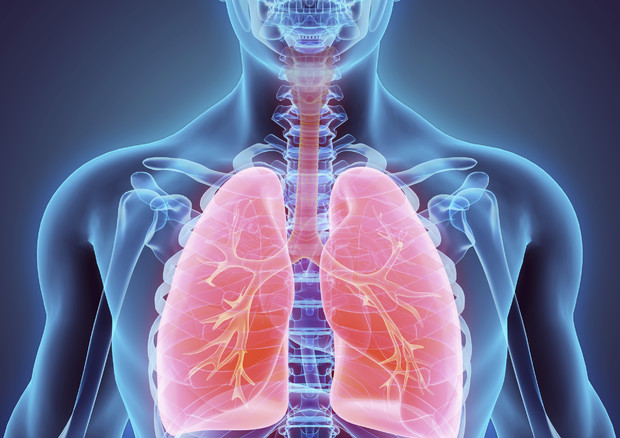 Scoperto il meccanismo per bloccare la crescita del tumore al polmone