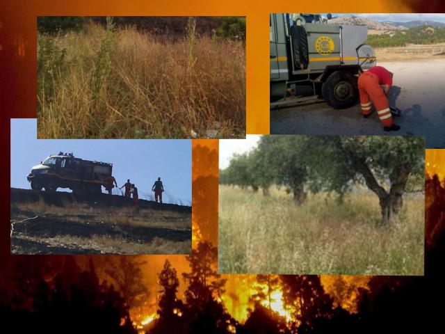 Incendi e prevenzione in Sicilia. Molte lacune e poca realtà