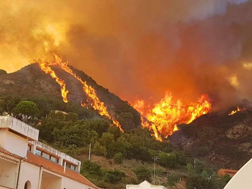 Incendi: Codacons presenterà esposti alle Procure siciliane