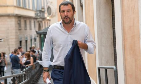 """Salvini: """"Querelo Alfano poltronaro"""""""