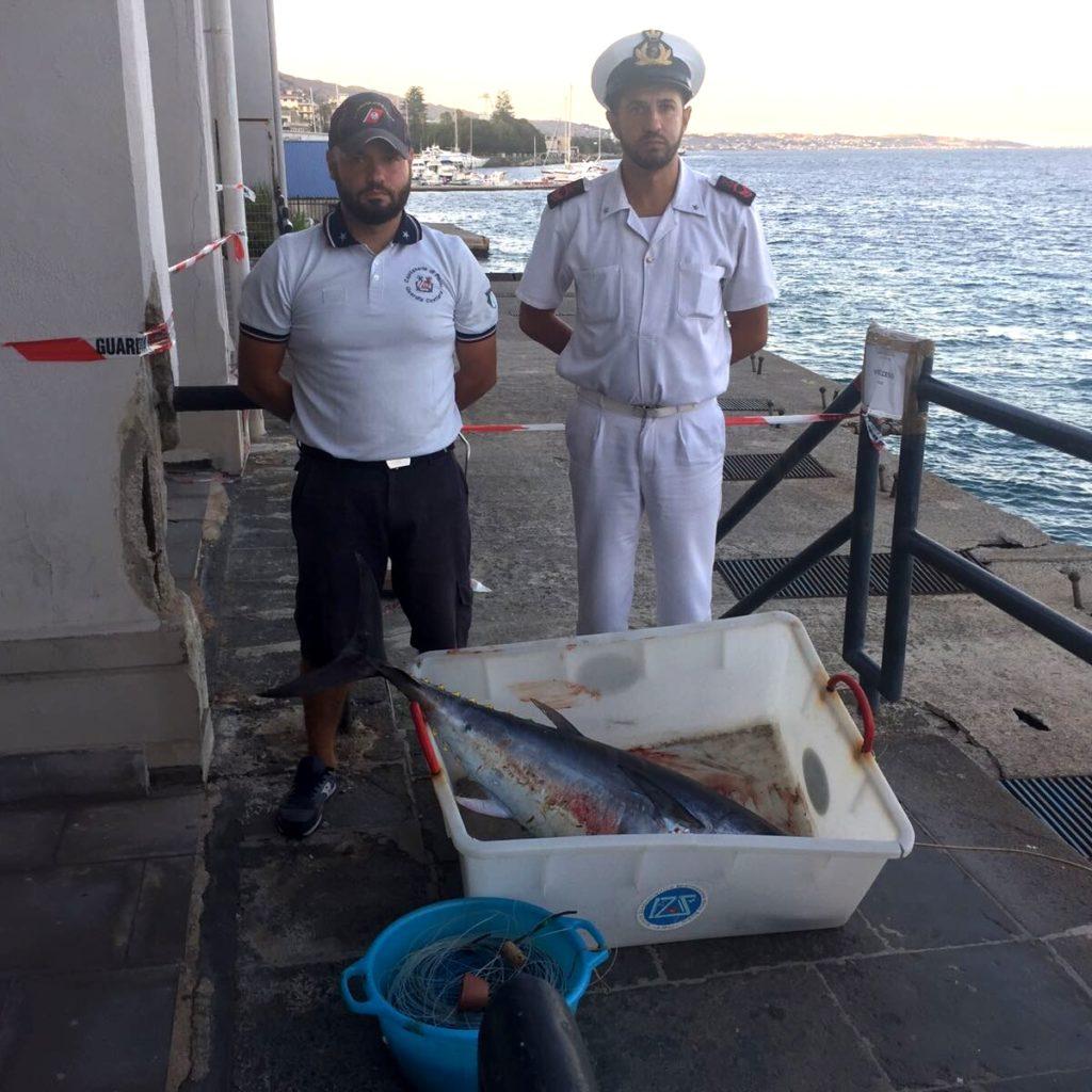 Messina/ Capitaneria sequestra tonno rosso