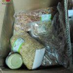 Sicurezza ambientale: sequestrati nel territorio di Torrenova pane, mandorle e pistacchi