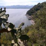 Area Marina Protetta a Capo Milazzo, troppi i ritardi politici secondo il Sen. Scilipoti Isgrò