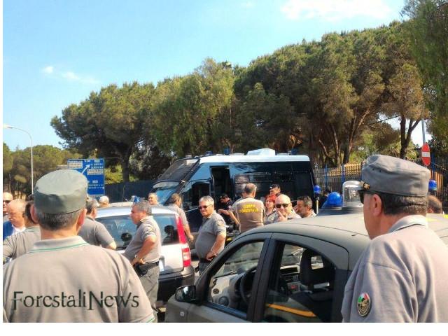 Vasto il territorio boschivo, ma poche le Guardie del Corpo Forestale Siciliano