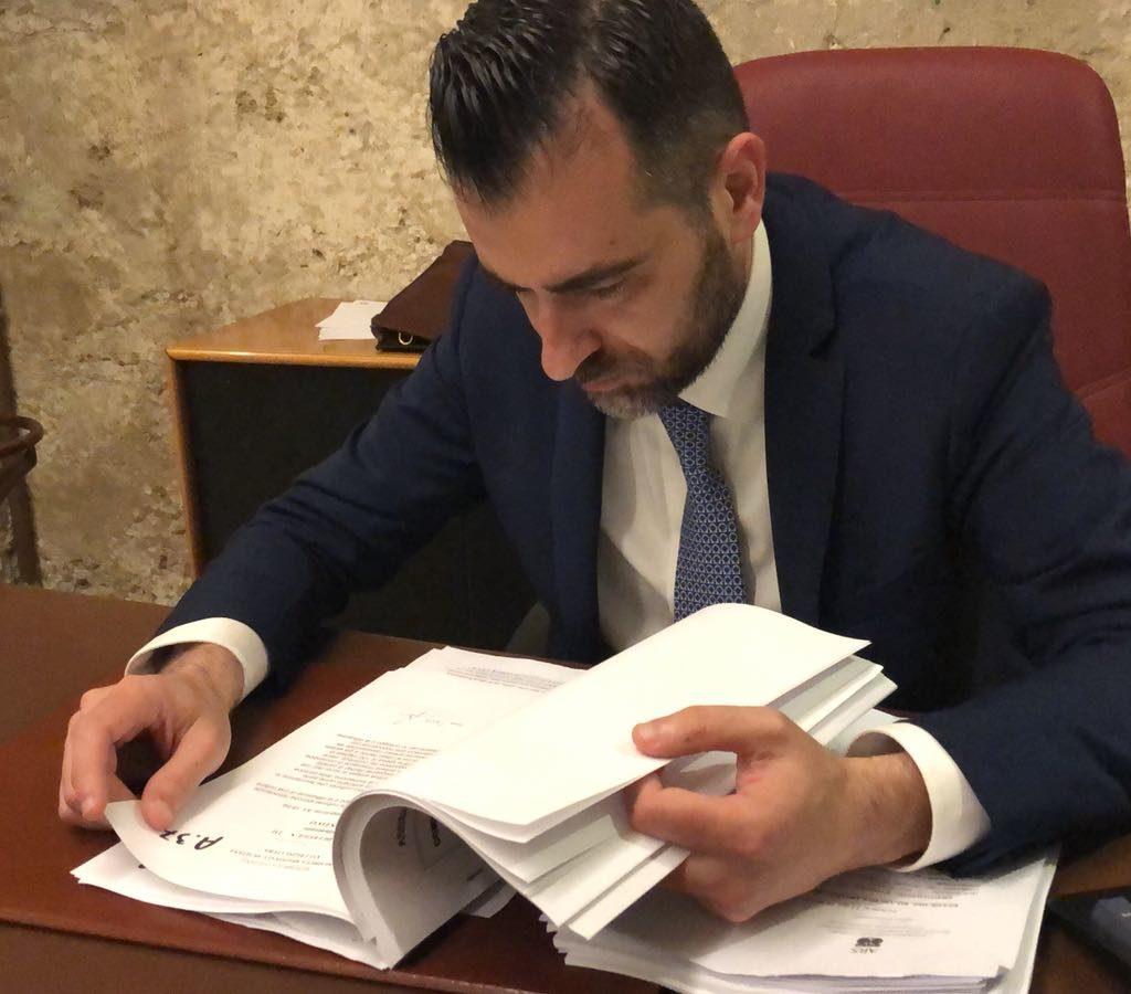 """Commissioni speciali Ars, Catalfamo nella randagismo: """"porterò il mio impegno per la difesa degli animali"""""""
