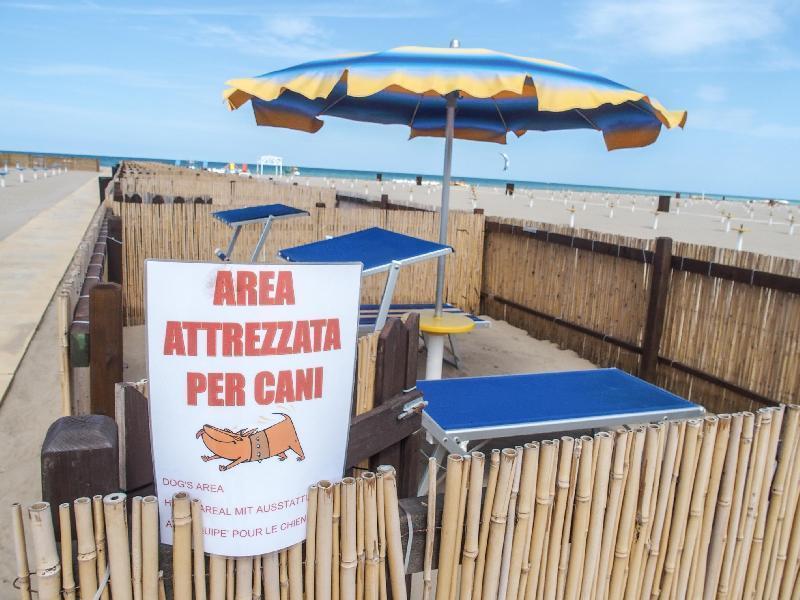 Milazzo/ L'ADASC rilancia la proposta di istituire la spiaggia per i nostri amici a quattro zampe.