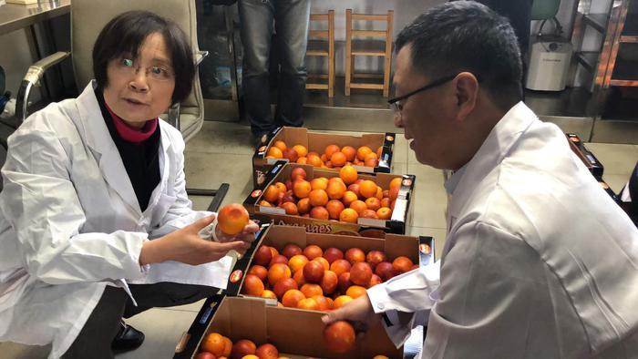 Arance rosse in Cina all'ambasciata italiana
