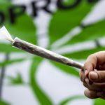 Marijuana può condizionare la fertilità in entrambi i sessi