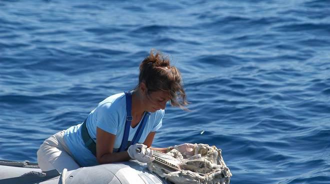 Incontro al MuMa Milazzo con Sabina Airoldi responsabile dell'Istituto di ricerca sui cetacei Tethys