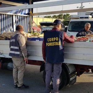 """CORONAVIRUS, CARO PREZZI E PROTESTE AL MERCATO GENERALE DI SIRACUSA U.DI.CON: """"TROPPE ANOMALIE, ALTO RISCHIO SPECULAZIONI SU BENI ALIMENTARI"""""""