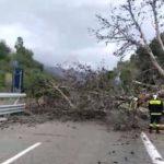 """CittadinanzAttiva e il Comitato """"A18 A20 Le Autostrade siciliane della Vergogna""""/  Al Prefetto di Messina richiesto incontro urgente"""