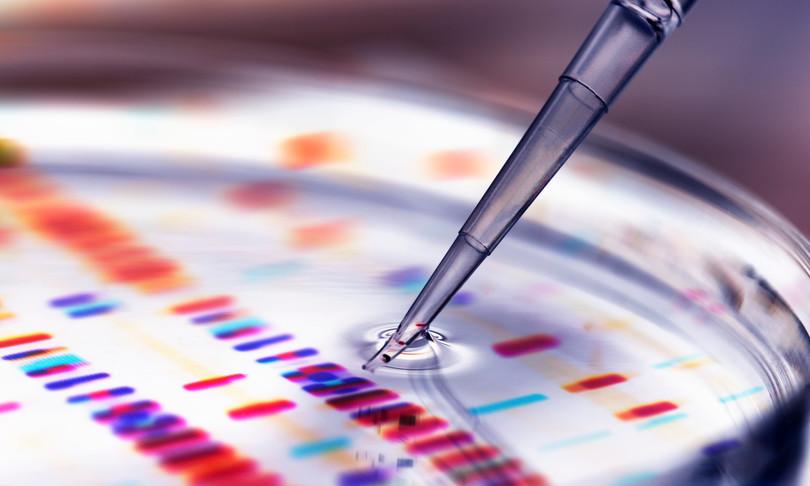 Dall'università di Torino nuove speranze per la cura dei  tumori al colon-retto