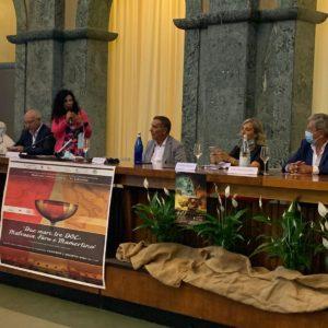 """""""Due mari, tre Doc: Malvasia, Faro e Mamertino"""". Si è svolta al Palazzo camerale la II edizione di """"Malvasie senza confini"""""""